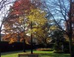 Autunno alla casa di riposo - novembre 2012